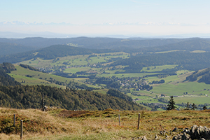 Blick vom Herzogenhorn ins Bernauer Hochtal